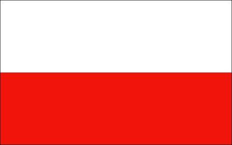Zwiększenie bezpieczeństwa na polskich drogach to priorytet